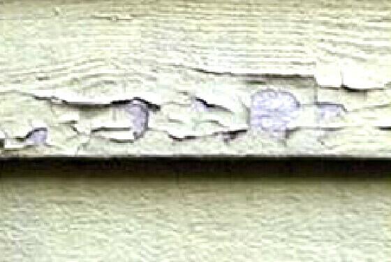 木部の塗装の剥がれ